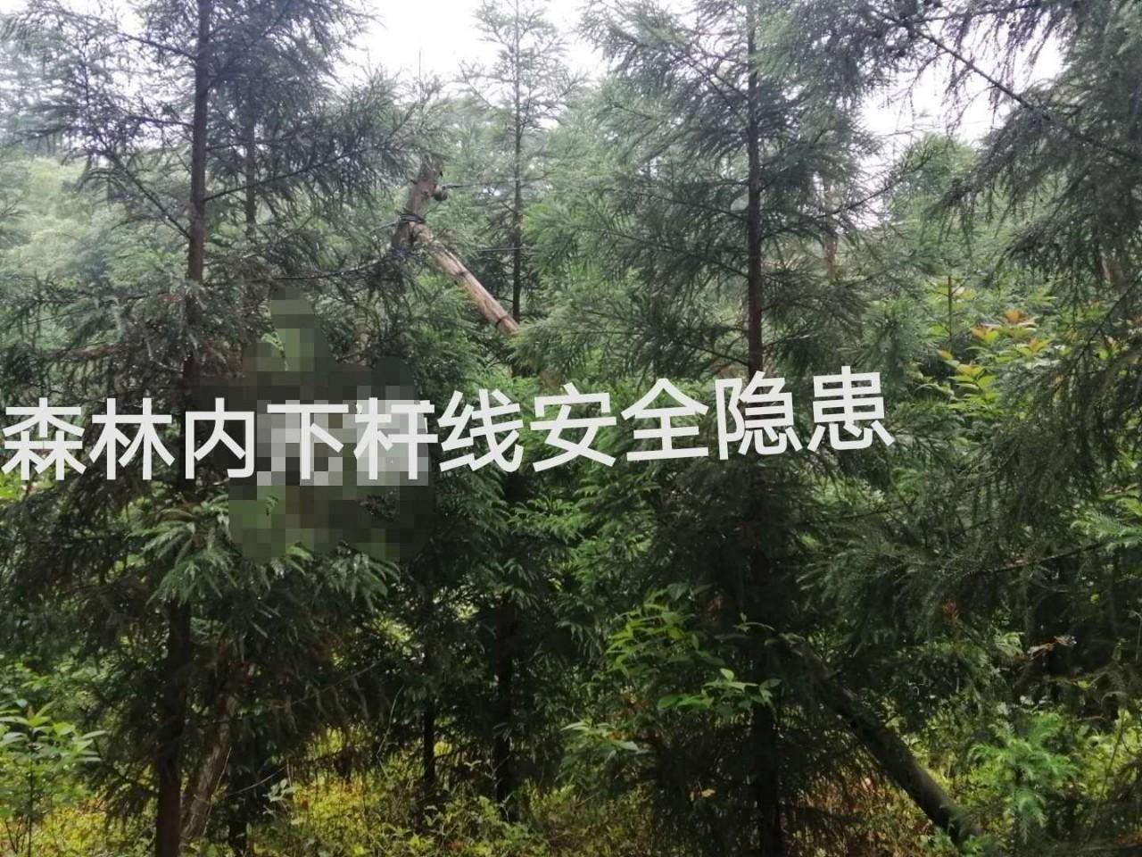 电力,人为因素等森林防火安全隐患