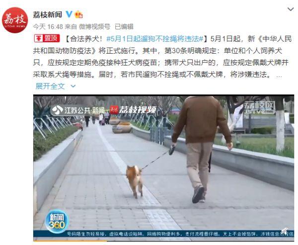 【晚8点红包】你怎么看5月1日起遛狗不拴绳或不佩戴犬牌,将涉嫌违法